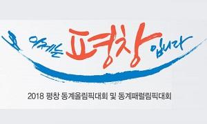 2018 평창 동계올림픽대회 및 동계올림픽대회