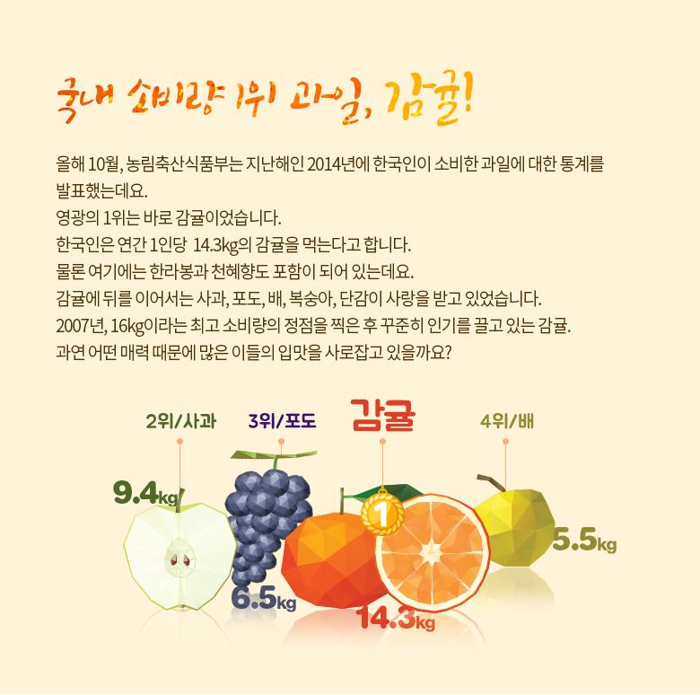 국내 소비량 1위 과일, 감귤!