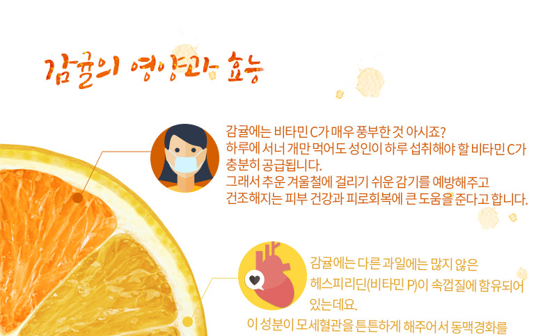 감귤의 영양과 효능 1