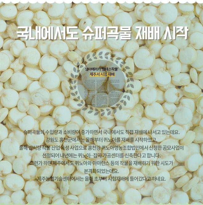 국내에서도 슈퍼곡물 재배 시작