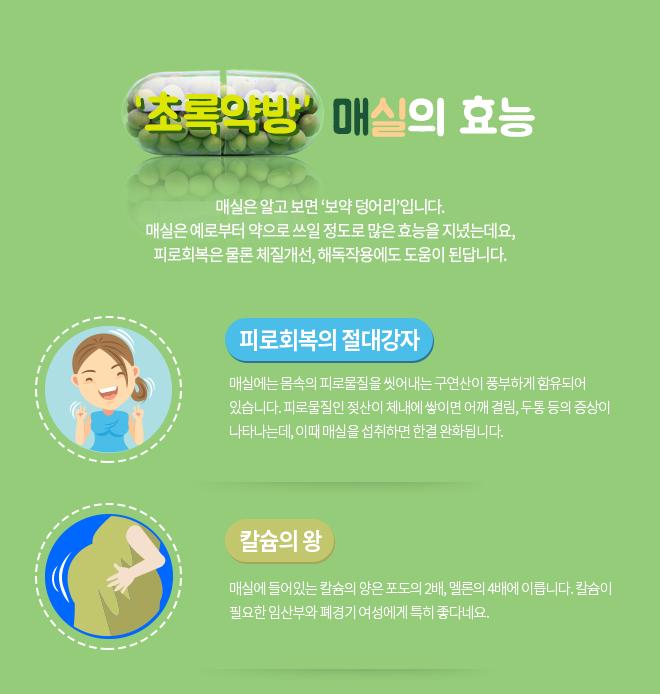 초록약방 매실의 효능-피로회복의 절대강자, 칼슘의 왕