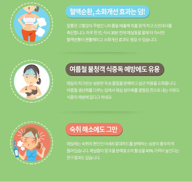 초록약방 매실의 효능-혈액순환, 소화개선, 식중독 예방, 숙취해소