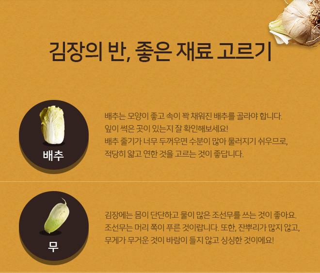 김장의 반, 좋은 재료 고르기 -배추,무