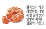 한국인이 가장 사랑하는 과일 제철 맞아 맛과 영양이 톡톡! 감귤의 모든 것