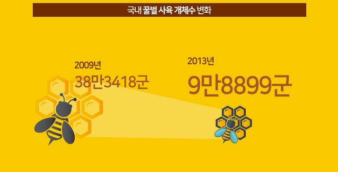 국내 꿀벌 사육 개체수 변화 추이