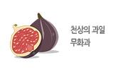 천상의 과일 무화과