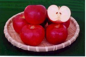 사과(홍옥)