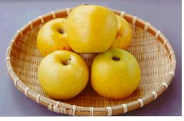 사과(골든데리셔스)